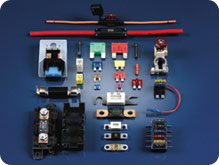 An Assortment of Automotive Fuses